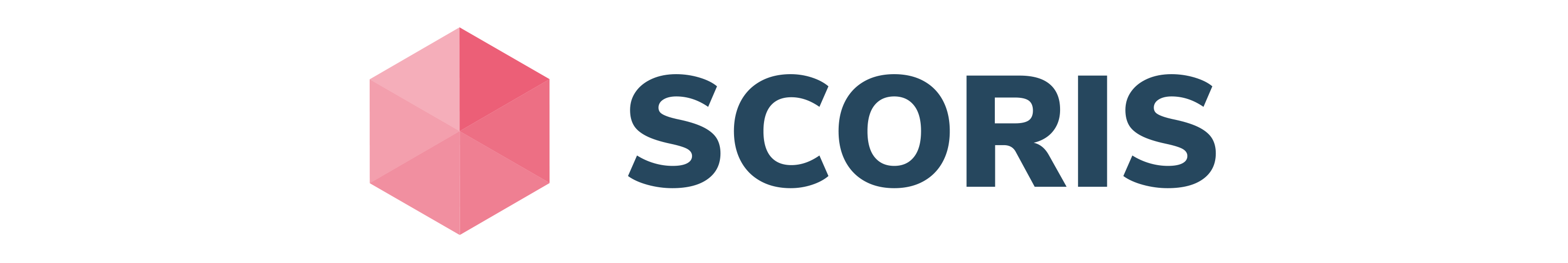 SCOPE Logo SCORIS